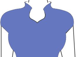 Stand-up-Collar-with-Sweetheart-neck